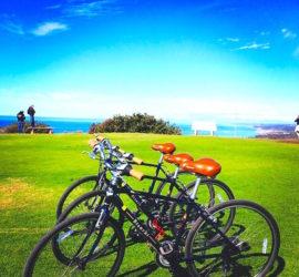 La Jolla Coast Soledad Bike Tour La Jolla Kayak